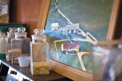 Gene and Norma Ehmann house interior with painting and jars of seeds