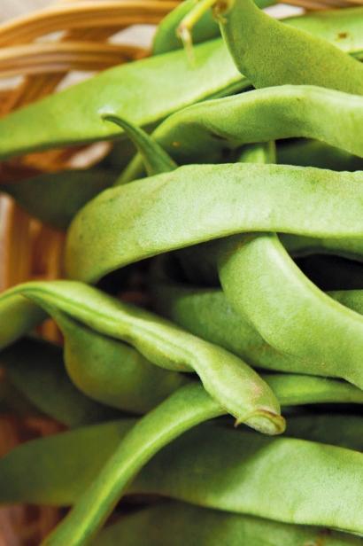 Italian Flat Beans