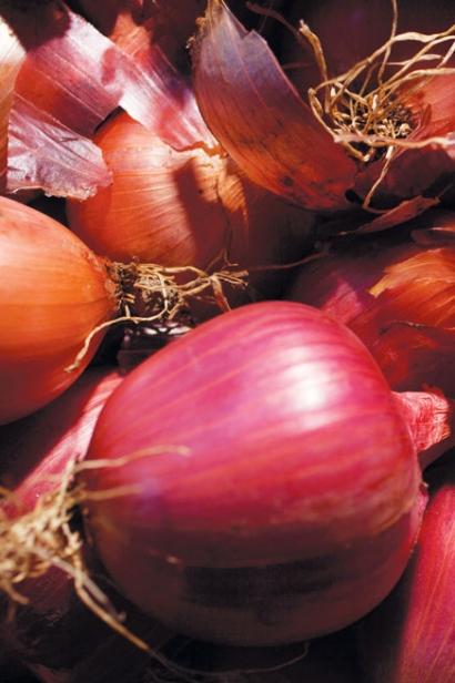 Rossa di Milano Onion