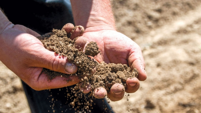 Eli inspects the soil at Blossom Acres by running it through his hands