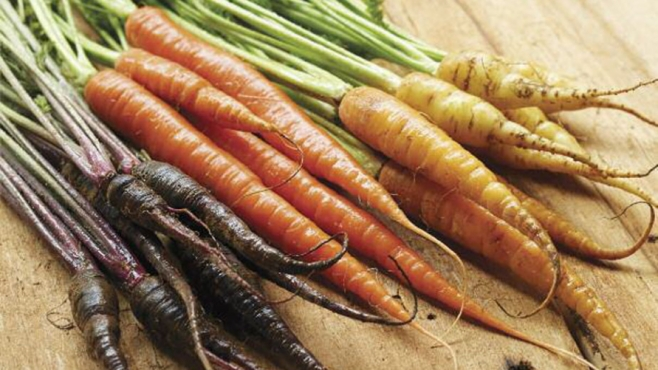 Purple, orange and white carrots