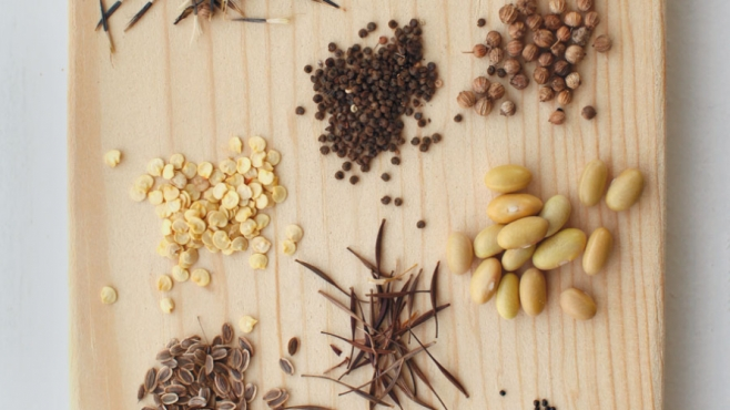 different types of seeds on a cutting board