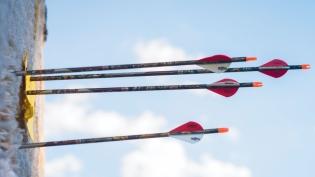 archery arrows hitting their mark